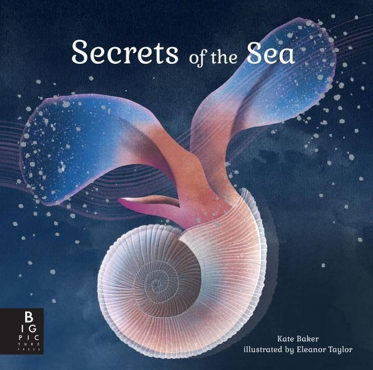 Big Picture Press Secrets of the Sea