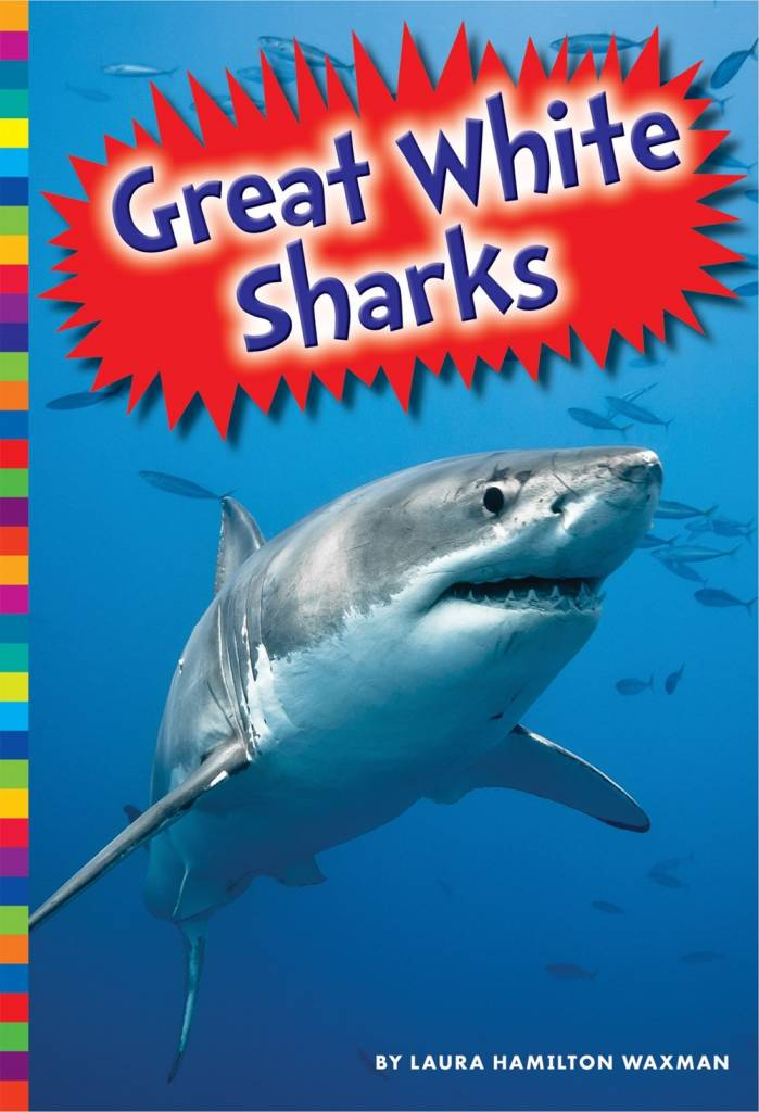 Amicus Ink Sharks: Great White Sharks [Ocean Creature]