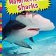 Amicus Ink Sharks: Hammerhead Sharks [Ocean Creatures]