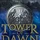Bloomsbury USA Childrens Throne of Glass (Companion) Tower of Dawn