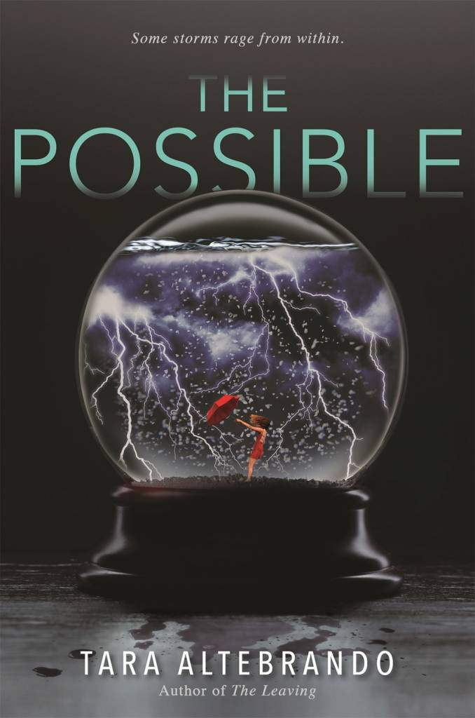 Bloomsbury USA Childrens The Possible