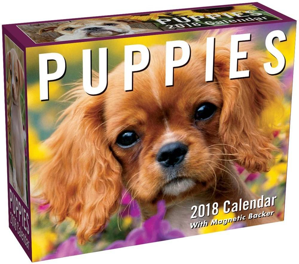 Andrews McMeel Publishing Puppies (2018 Mini Day-to-Day Calendar)