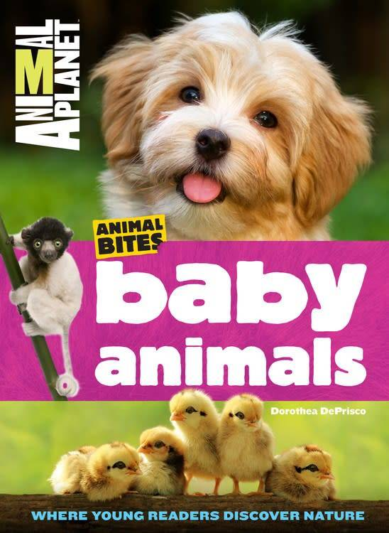 Animal Planet: Animal Bites: Baby Animals