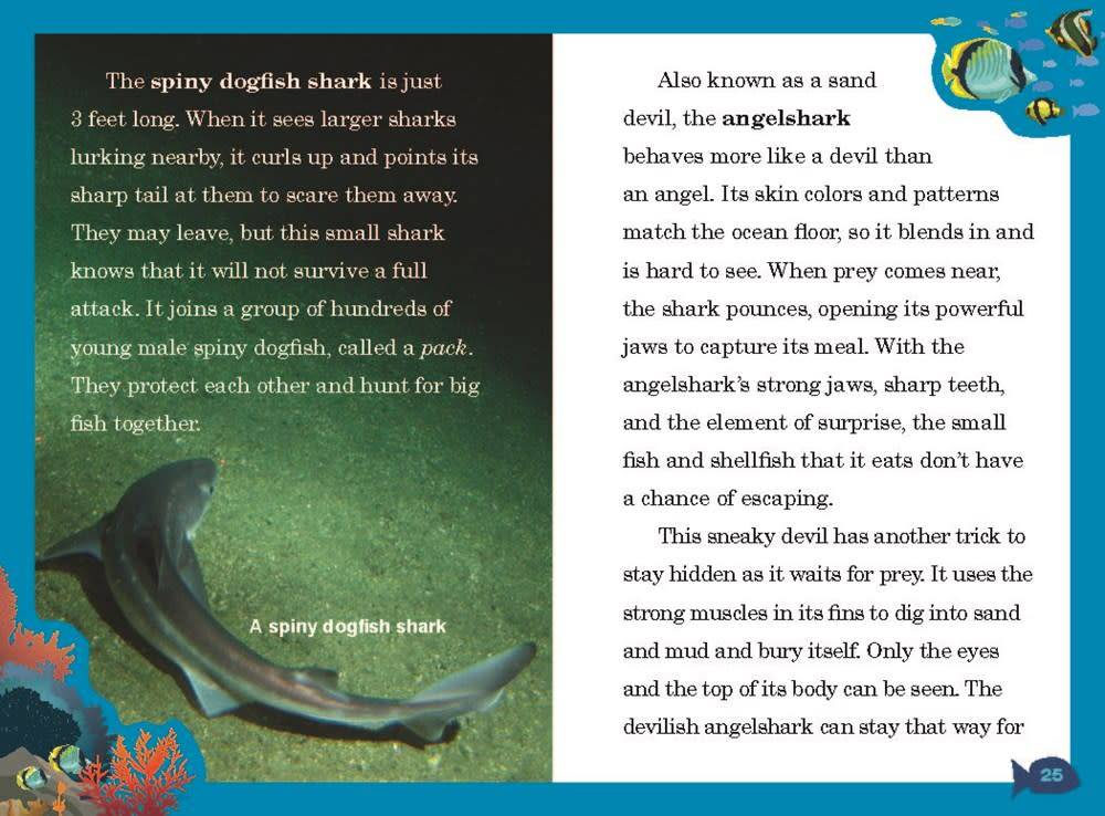 Animal Planet (Chapter Books) 01 Sharks!