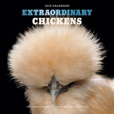 Abrams Calendars Extraordinary Chickens 2019 Wall Calendar