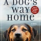 Forge Books A Dog's Way Home