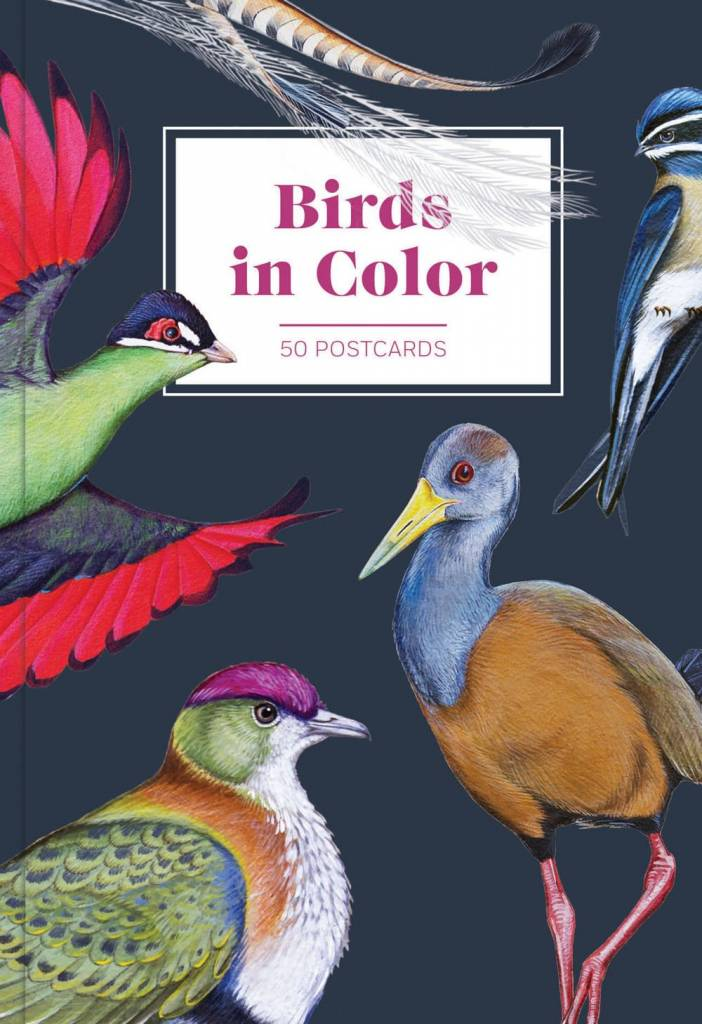 Chronicle Books Birds in Color 50 Postcards