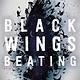 Farrar, Straus and Giroux (BYR) Black Wings Beating