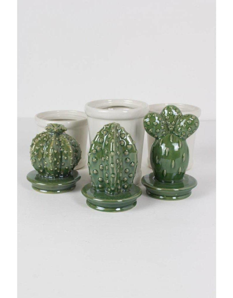 Kalalou Cactus Cannisters Sm