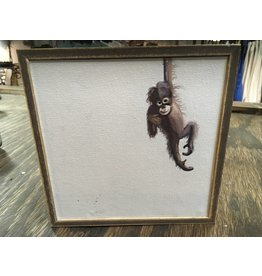 Greenbox Baby Monkey (6X6)