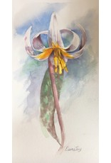 Elaine Jary Art Trout Lily #1