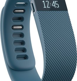 Fitbit Fitbit Charge Wireless Activity Wristband-Slate, Large