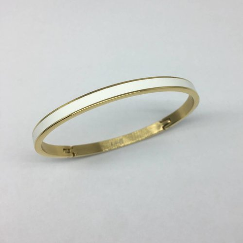 Plated Surgical Steel Enamel Bangle