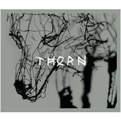 Thorn 2013 Merlot, Napa Valley