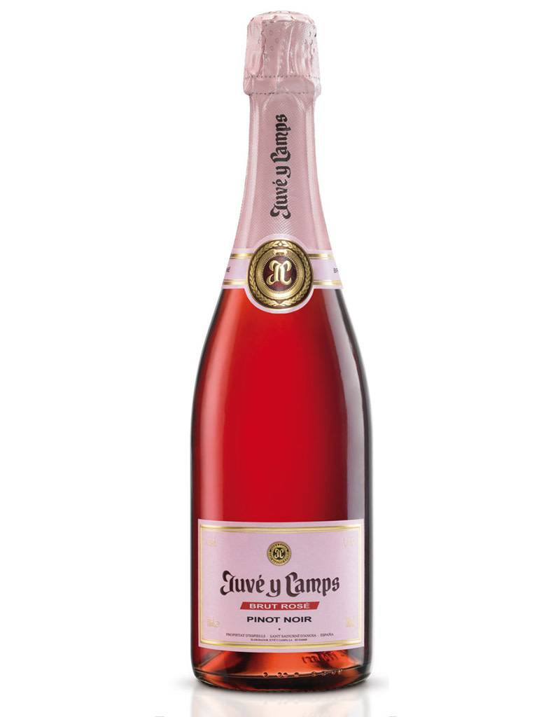 Juve Y Camps Rosé Brut NV Cava, Spain