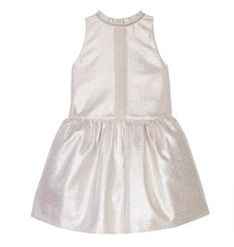 Wild & Gorgeous Giselle Dress - Metallic
