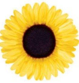 BAR PART ELECTRA SUNFLOWER FLOWER YELLOW