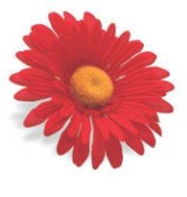 BAR PART ELECTRA SUNFLOWER FLOWER RED