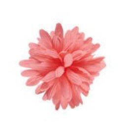 BAR PART ELECTRA DAHLIA FLOWER PINK