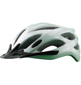 EVO, E-Tec Draft Team, Helmet, Silver, LG/XL 54-62cm