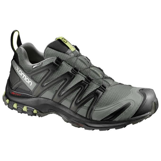 Salomon Men's XA PRO 3D CS WP Trail Running ...