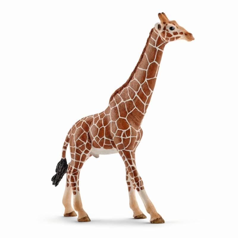 Schleich SCHLEICH 14749 - Giraffe male