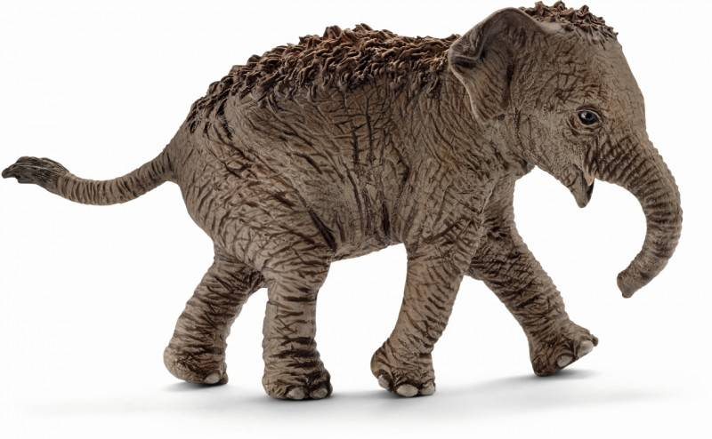 African Elephant Toys For Boys : Amazon tang dynasty tm zoo animal african elephant pvc