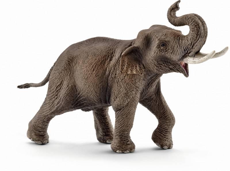 African Elephant Toys For Boys : Qoo mojo african elephant toy figure toys