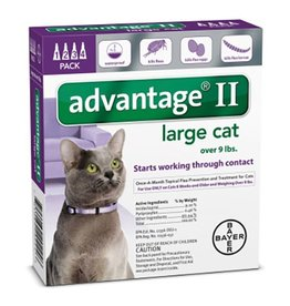 Advantage II for cats large over 9lbs