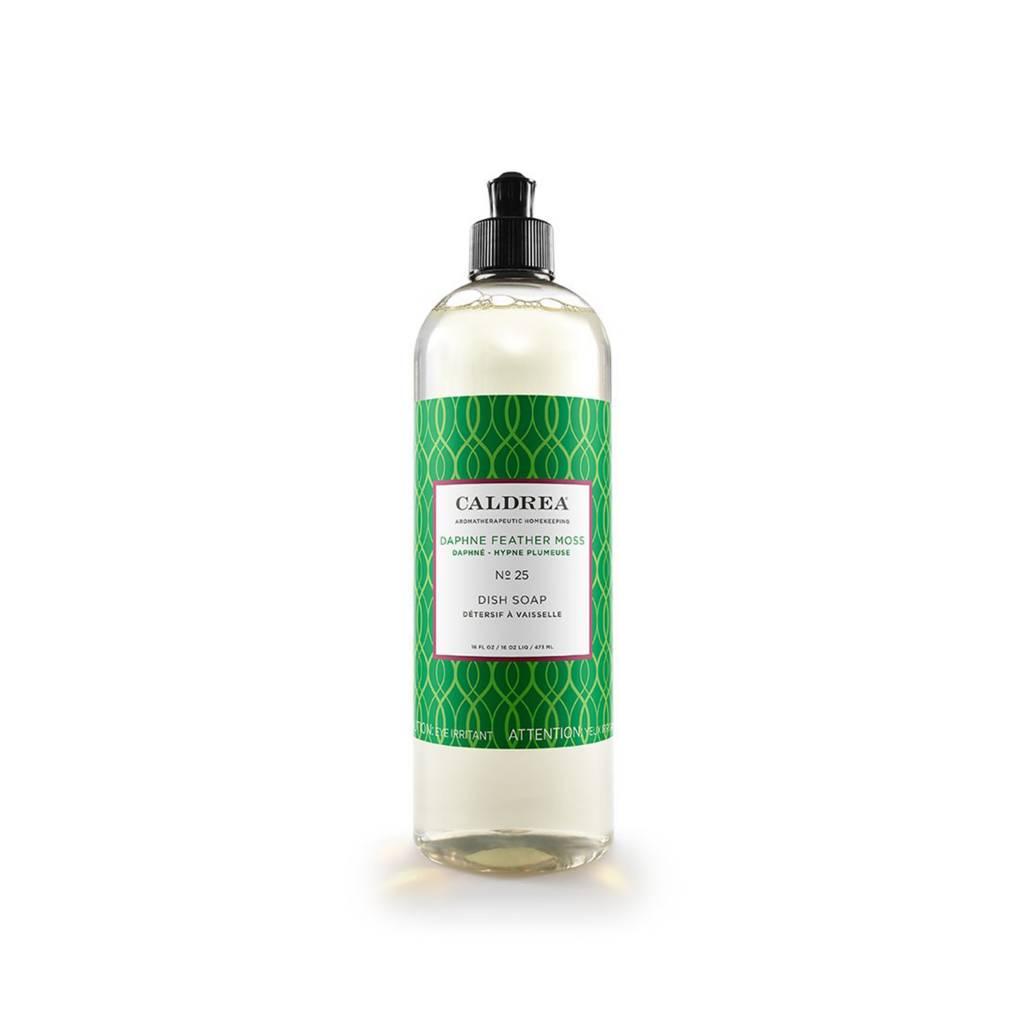 Caldrea Daphne Feather Moss Dish Soap