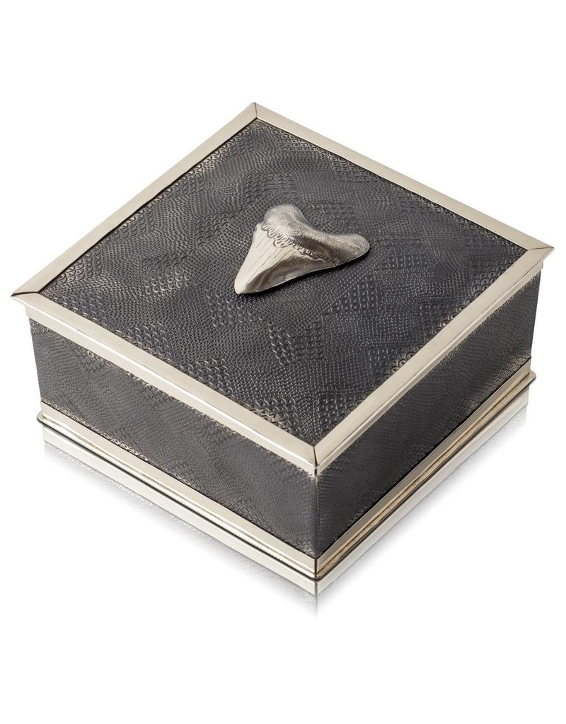 Megalodon Shark Tooth Keepsake Box