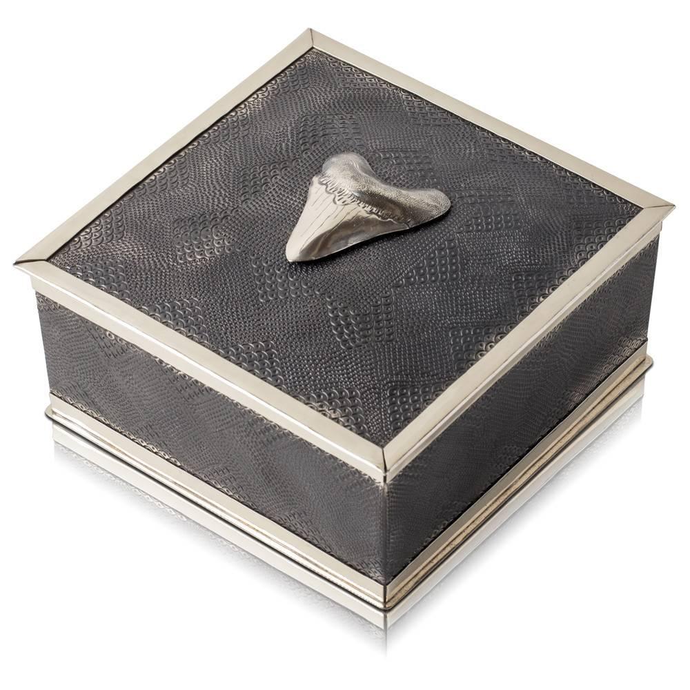Megalodon Shark Tooth Keepsake Box