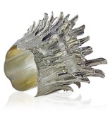 Spiny Murex Conch Cuff