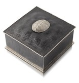 Turtle Shell Keepsake Box