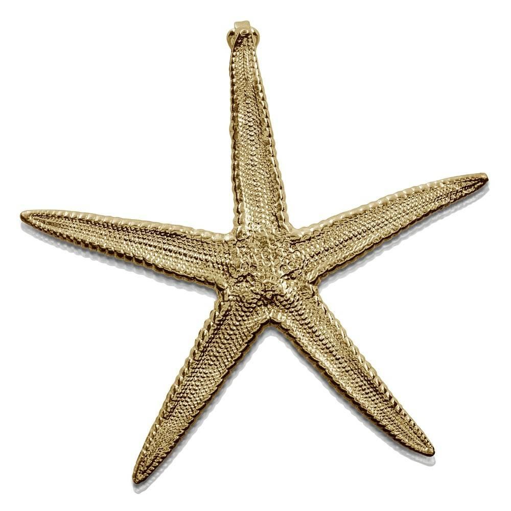 Starfish Enhancer (Large)