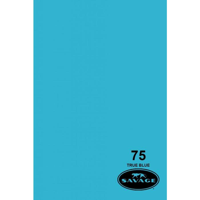 "Savage 53"" Seamless Paper True Blue"