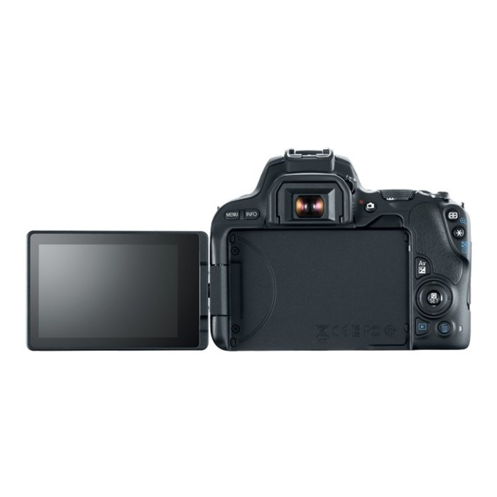 Canon EOS Rebel SL2 w/ 18-55mm f/4-5.6 IS STM