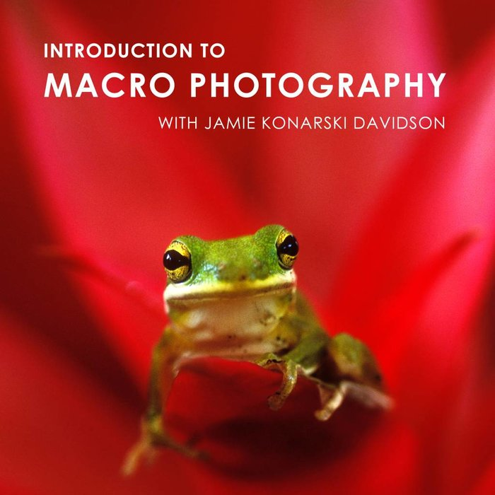 Intro to Macro Photography Class (Jan 23 & 25, 2018)