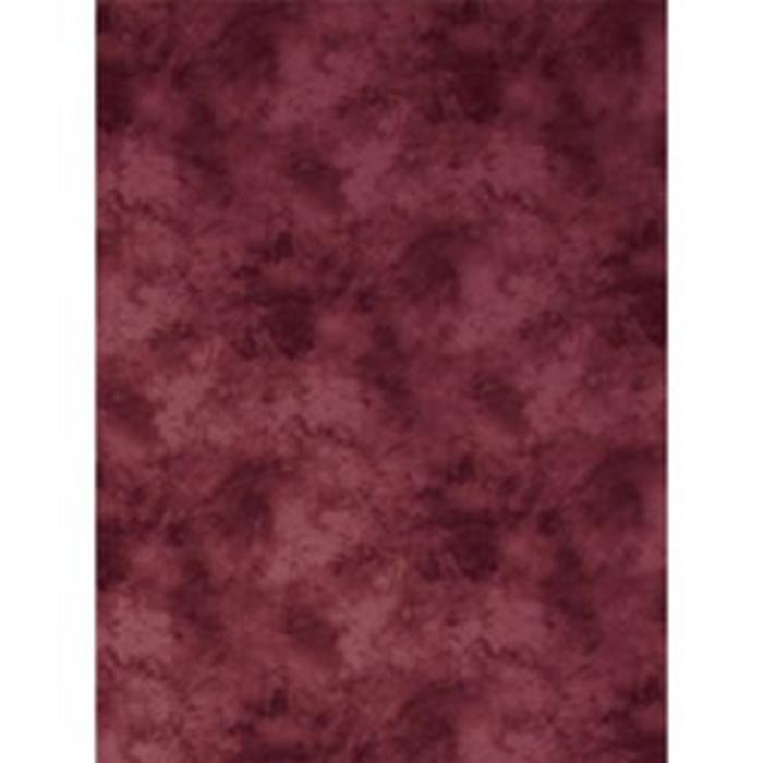ProMaster 10x12 Background - Cloud Red