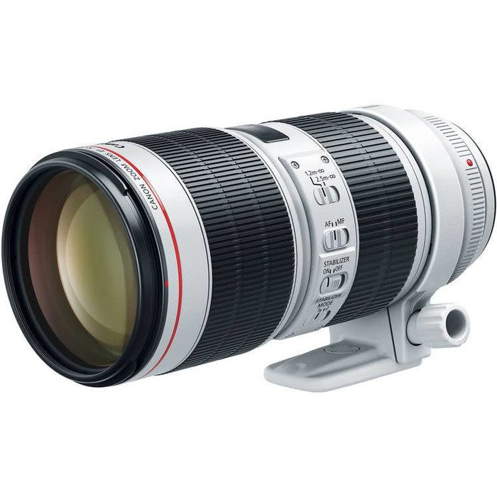 Canon EF 70-200mm f/2.8L IS III USM Lens (pre-order)