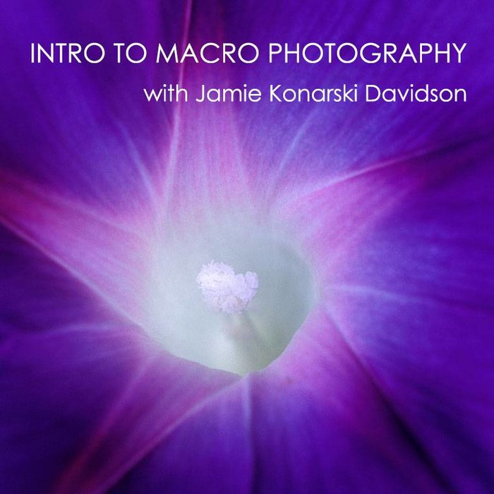 Intro to Macro Photography Class (July 16 & 18, 2018)