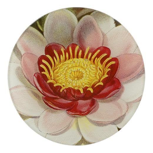 JOHN DERIAN John Derian's Rose Coloured Water Lily Plate