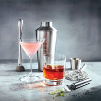 5-Piece Cocktail Shaker Kit