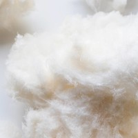 Maple cotton candy, 50 g