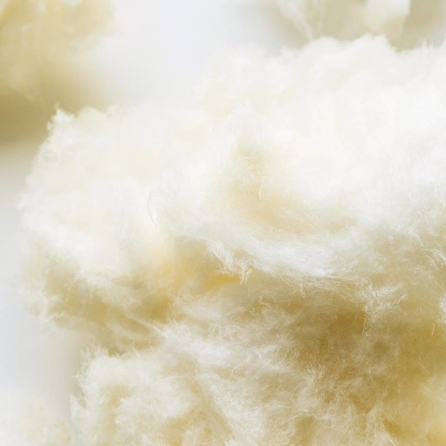 Lemon cotton candy - Photo 1
