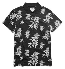 ALTAMONT HUWEE POLO