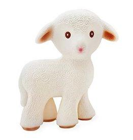 CaaOcho Mia the Lamb CaaOcho
