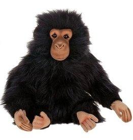 Hansa Baby chimp Hansa