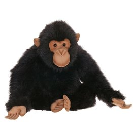 Hansa Chimp Hansa