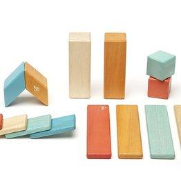 Tegu Tegu Magnetic Wooden blocks 14 pcs set